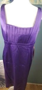 Clavin Klein Purple Dress Size 12